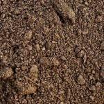 soil2_300
