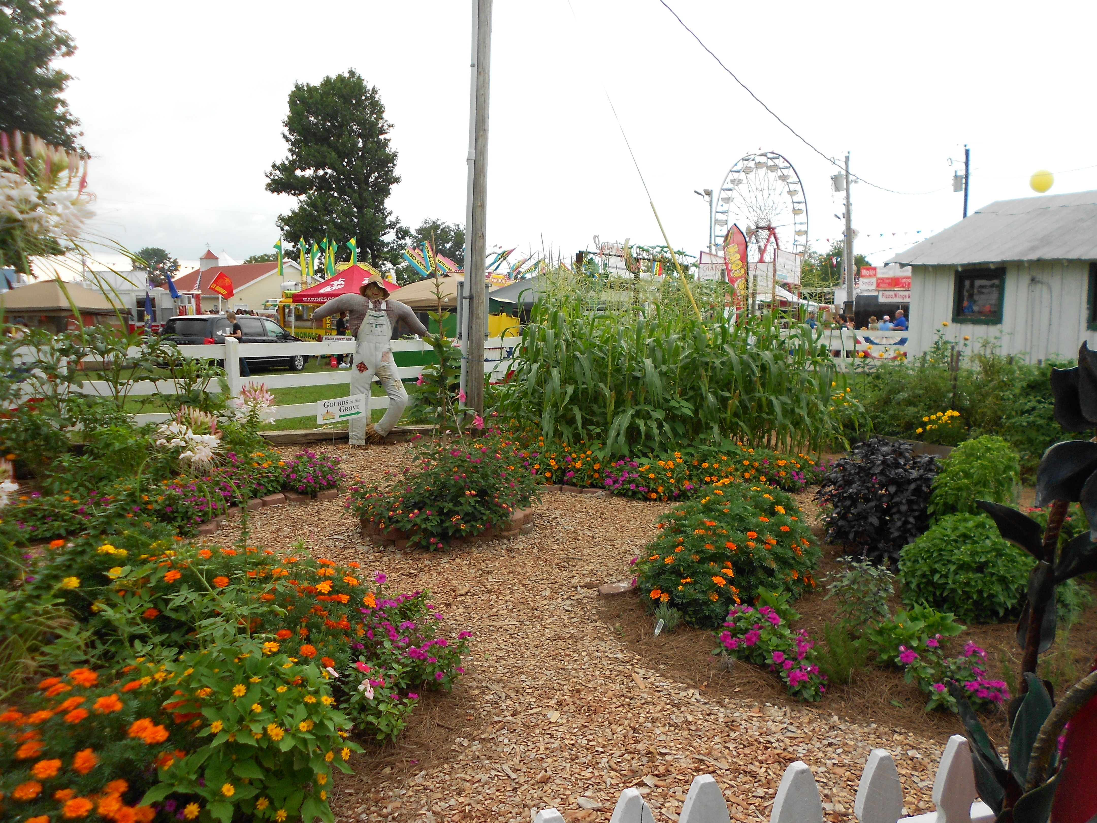 Photos – 2013 Wilson County Fair | Wilson County Master Gardener ...