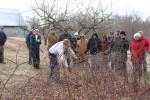 wcmg_pruning_workshop-huddleston-farm-20140214-IMG_9625