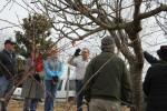 wcmg_pruning_workshop-huddleston-farm-20140214-IMG_9643
