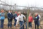wcmg_pruning_workshop-huddleston-farm-20140214-IMG_9676