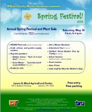 Spring Festival Flyer download