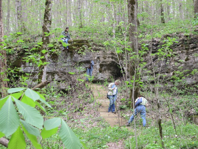 wcmg_taylor_hollow_hike_large_20140418_img_3024