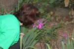 wcmg_picnic-20140805-img_4437